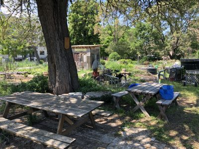 65th and Woodlawn Community Garden